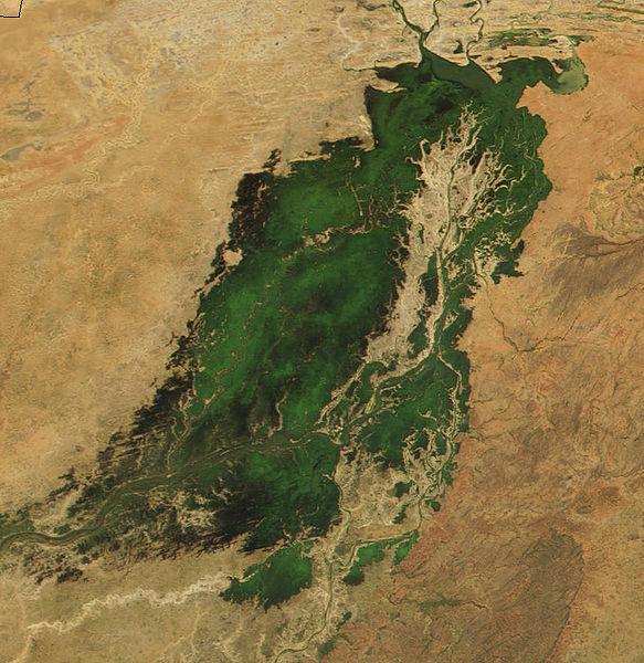 583px-Niger.Inland_Delta.NASA2001291
