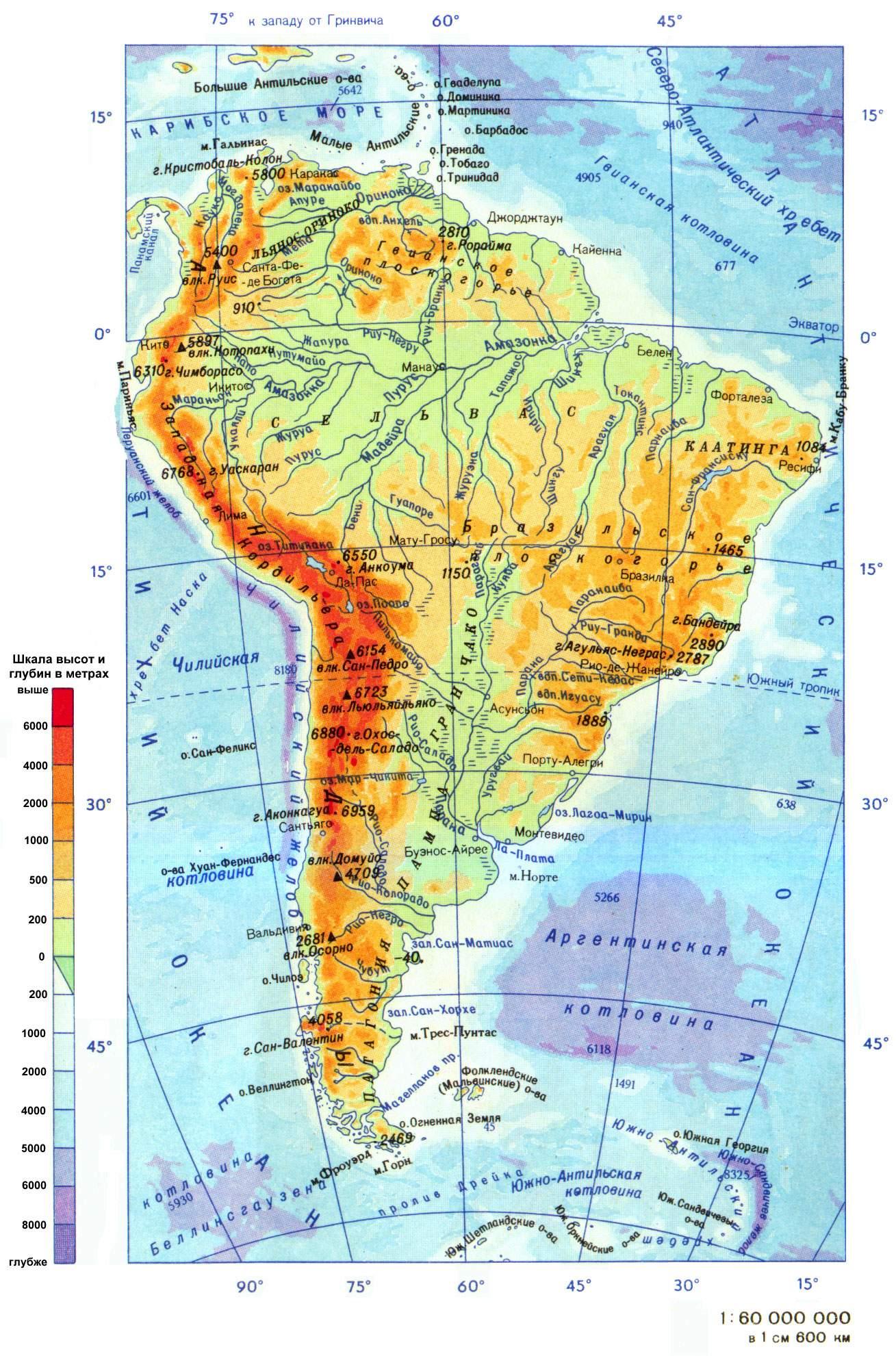 Фото картинки бразилия