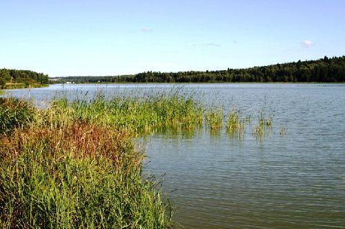 Рыбалка алтайский край озеро уткуль алтайского края