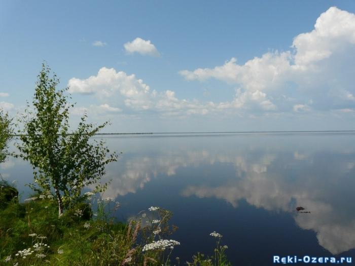 река вьюн ленинградская область рыбалка