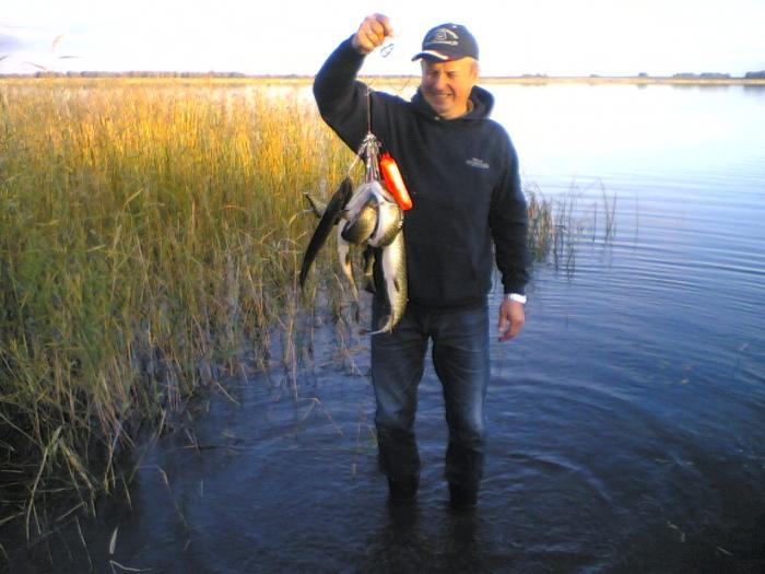 прогноз клева рыбы в челябинской области аргази