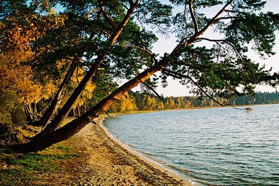 рыбалка на озере свитязь беларусь