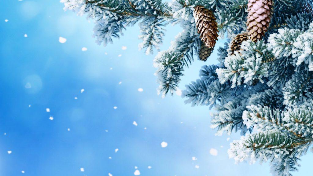 Новогодние заставки - красивая зимняя природа картинки