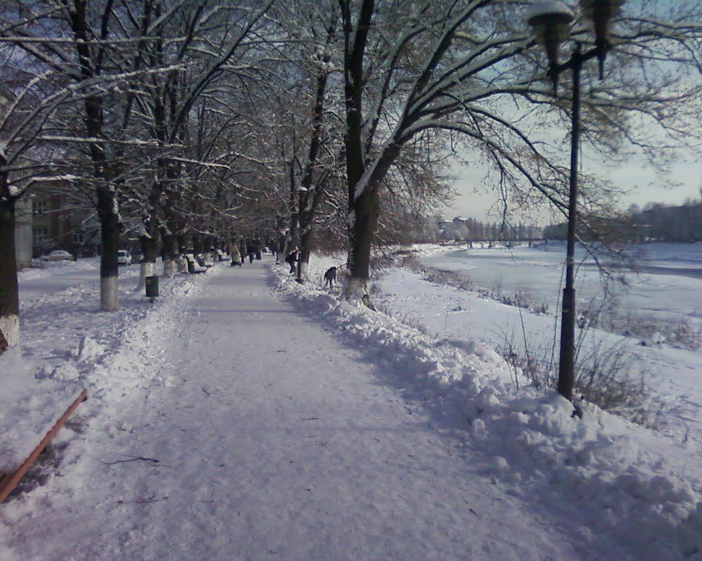 Зимняя Липовая аллея в Ужгороде