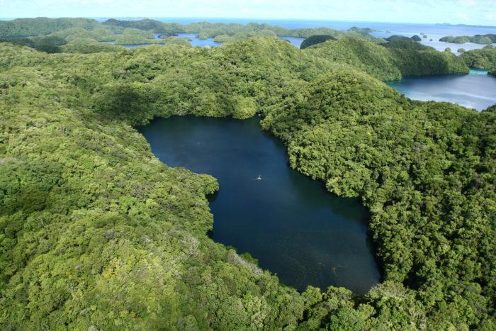 Самые популярные озера мира - озеро Медуз