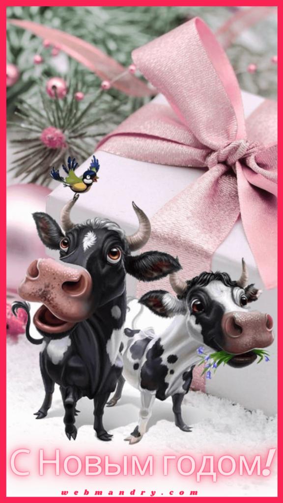Новогодние открытки с годом Быка 2021