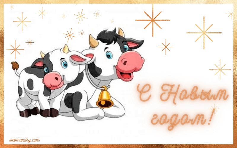 Интересная открытка на Новый год 2021 с бычками