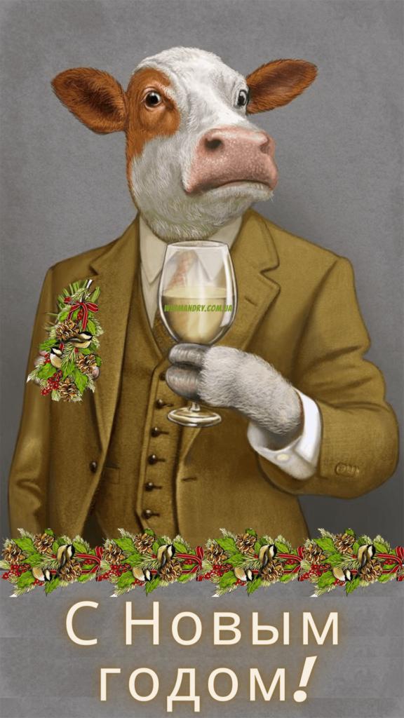 Прикольные открытки с Новым годом - картинки-поздравление с новогодними быками
