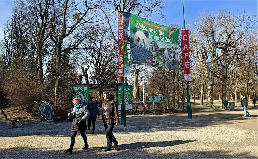 Шенбрунн фото - зима 2020 года